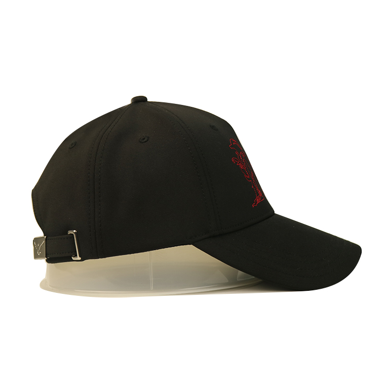 ACE Breathable embroidered baseball caps free sample for fashion-4
