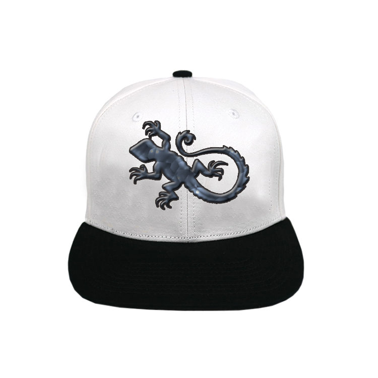 ACE funky grey snapback hat free sample for fashion-1