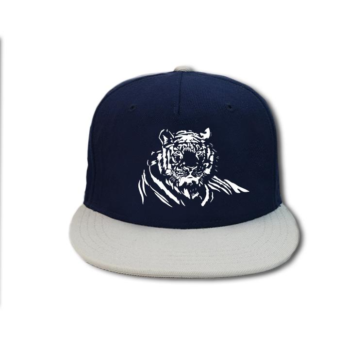 high-quality blank snapback hats crocodile customization for beauty-4
