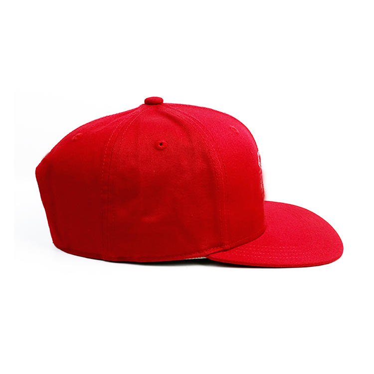 ACE caps blue snapback hat OEM for fashion-3