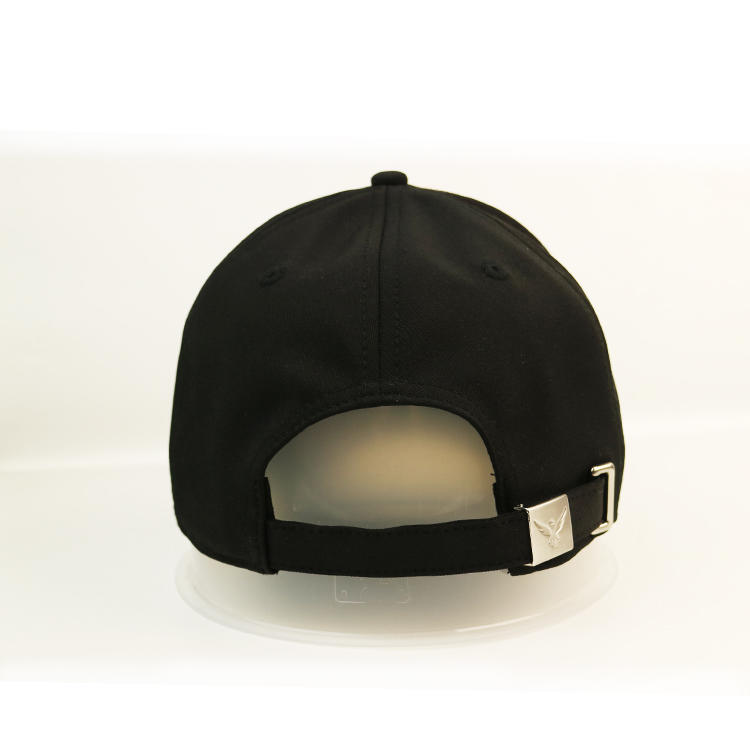 ACE patch embroidered baseball cap free sample for beauty-3