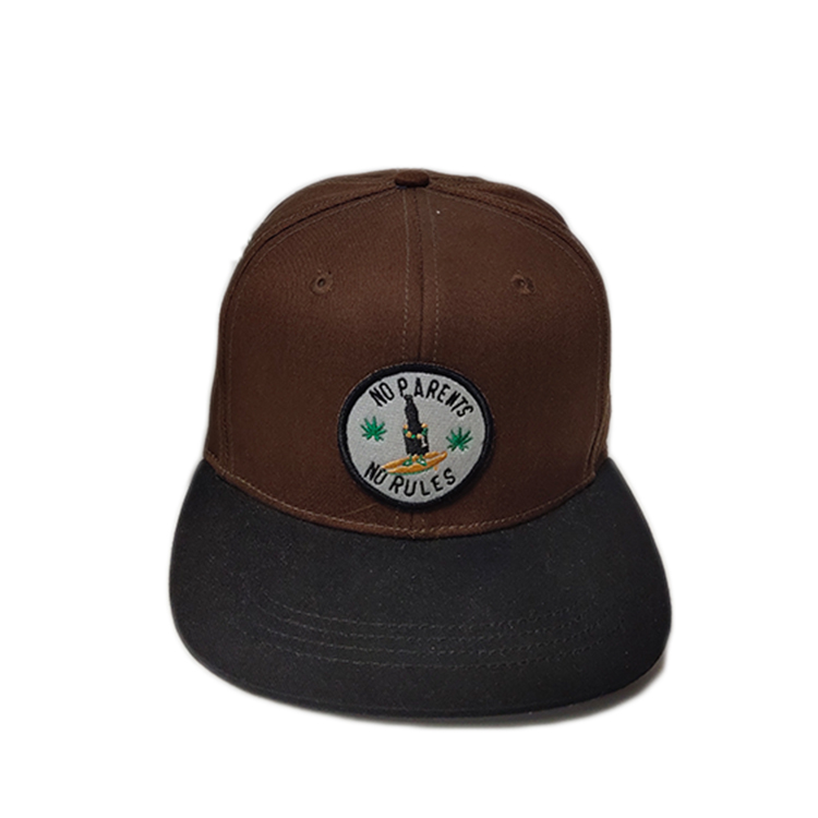 latest popular snapback caps embroidery get quote for fashion-1