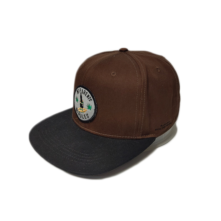 latest popular snapback caps embroidery get quote for fashion-2