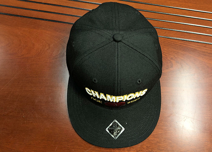 ACE brown blank snapback hats bulk production for fashion-5