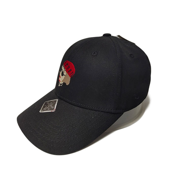 ACE at discount leather baseball cap free sample for beauty-2
