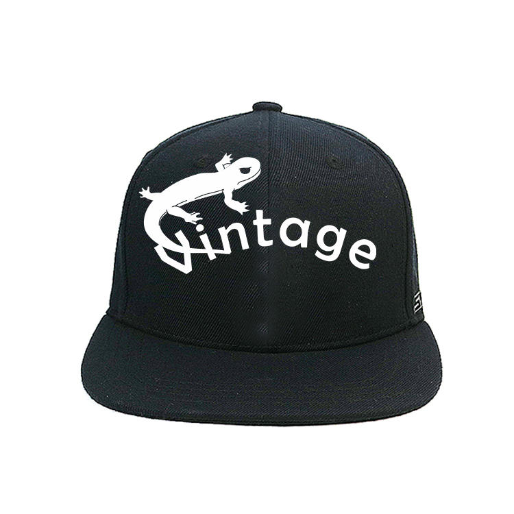 Flat Brim Black 6panel GW Gecko 3D Embroidery Logo Snapback Hats Caps