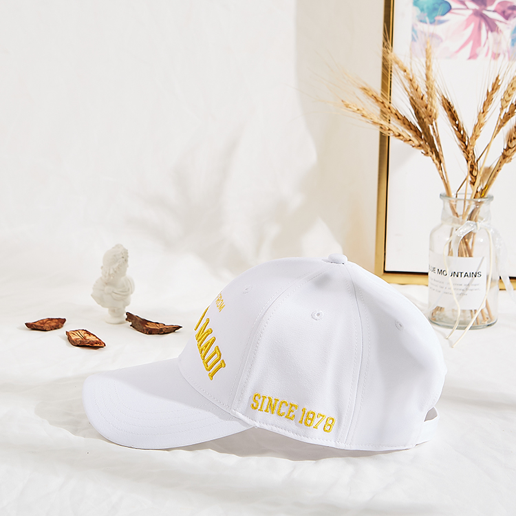 Breathable 5 panel baseball caps stylish for wholesale for man-2