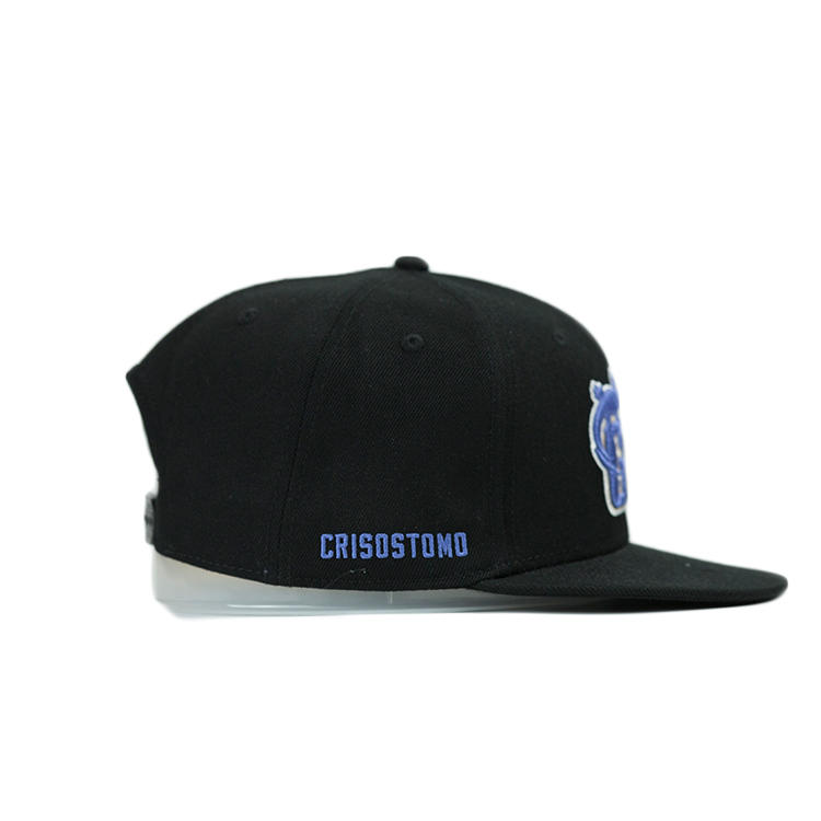ACE tiger blue snapback hat free sample for fashion-2