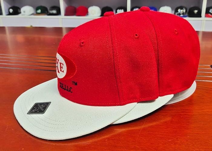 ACE panel plain snapback hats OEM for beauty-2