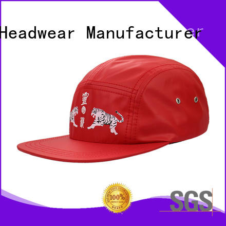 ACE at discount popular snapback caps buy now for fashion
