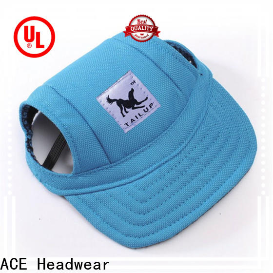 ACE hat best snapback hats OEM for fashion