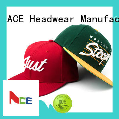 wing snapback hat for wholesale for fashion ACE